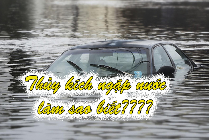 cach nhan biet o to thuy kich ngap nuoc 4